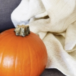 Fall Home Décor Ideas (That Aren't All Red & Orange)