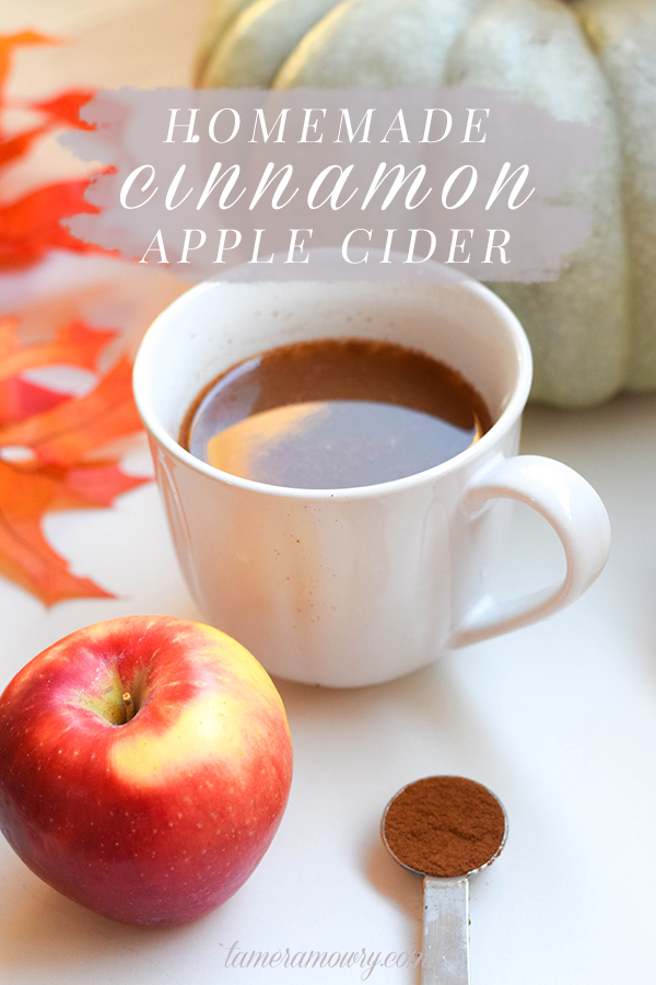 Homemade Apple Cider Recipe - Tamera Mowry